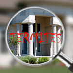 How Often Should You Have a Termite Inspection
